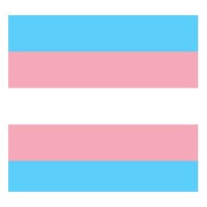 :kitty_trans:
